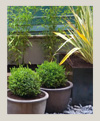 diseno-jardines-100X121