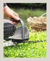 mantenimento-jardines-100X121